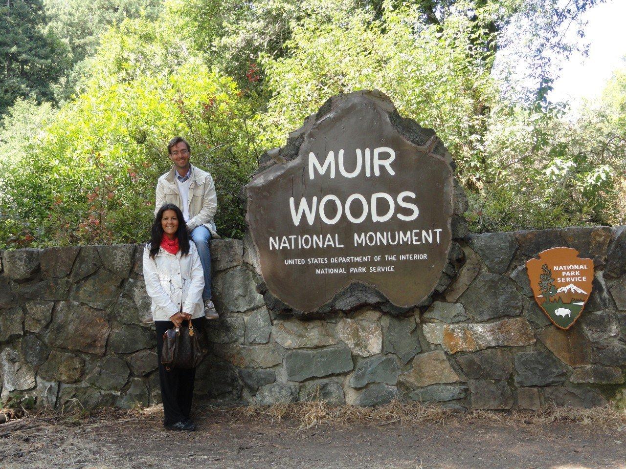 tour parchi americani, muir woods,