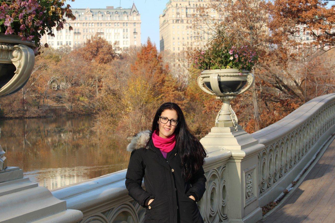 mattina a central park, natale a new york, central park bow bridge
