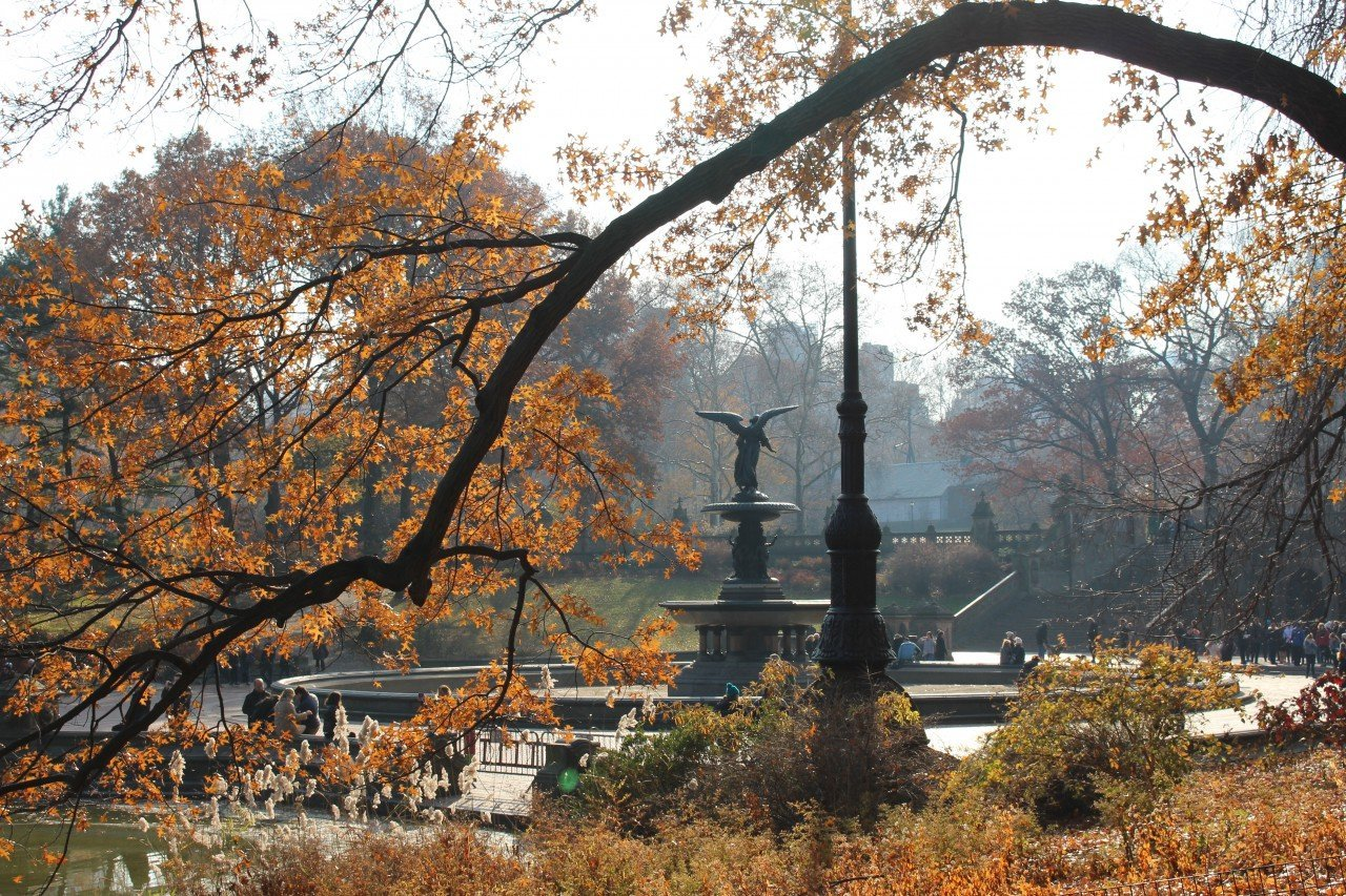 una mattina a central park, bethesda fountain