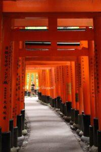 visita-al-fushimi-inari-kyoro