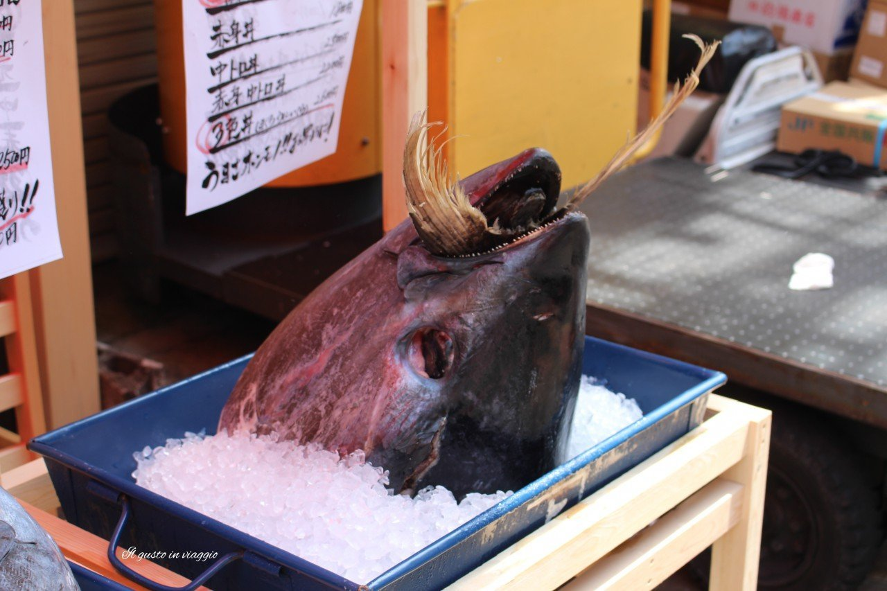 maguro mercato del pesce di tokyo mercato ittico tokyo testa di tonno mercato del pesce tokyo tusukiji
