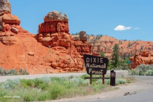 dixie national forest come visitare il bryce canyuon utah