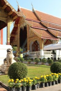 chiang mai thailandia, due giorni a chiang mai