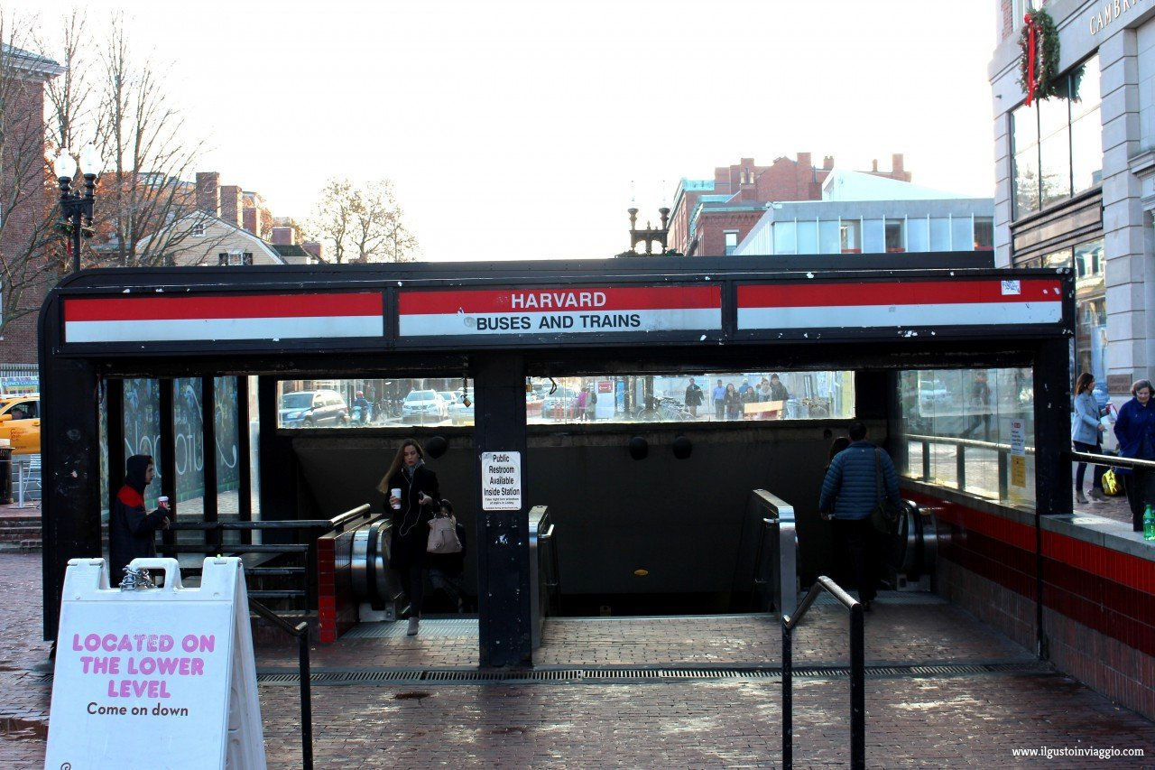 red line boston, visitare harvard