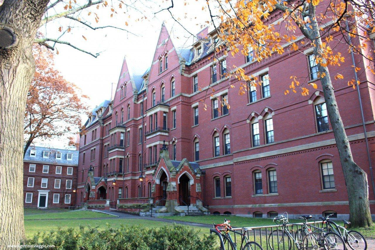 cosa vedere ad harvard, harvard university, visitare harvard