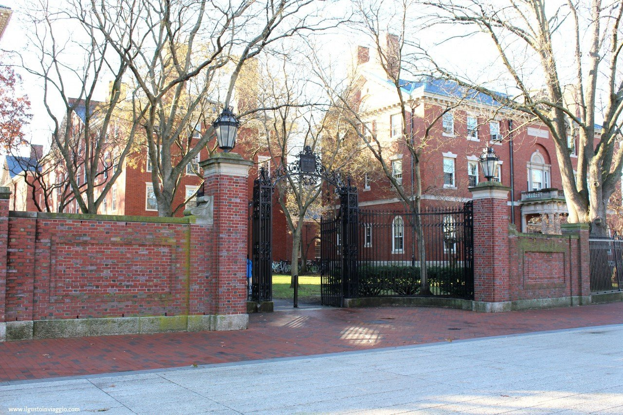 cosa vedere ad harvard, harvard university cambridge, visitare harvard