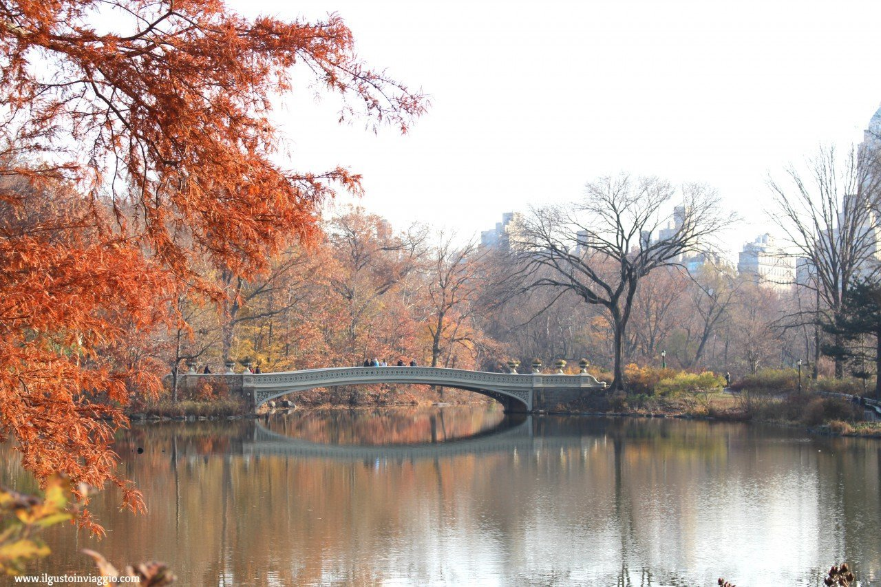 bow bridge, dove mangiare a central park
