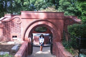 visitare capitol hill, washington dc us capitol, capitol hill gardens