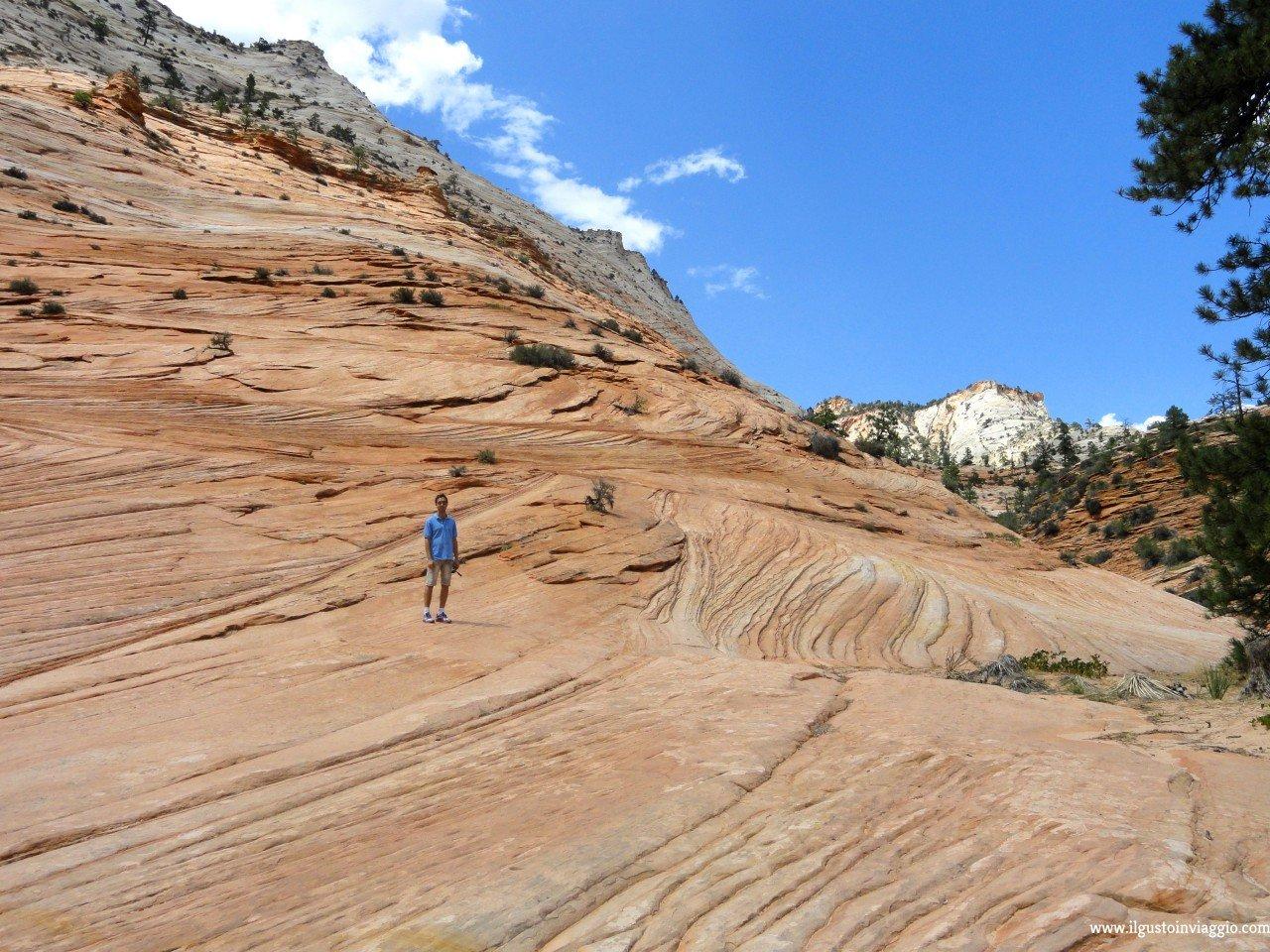visitare lo zion national park, come raggiungere lo zion canyon
