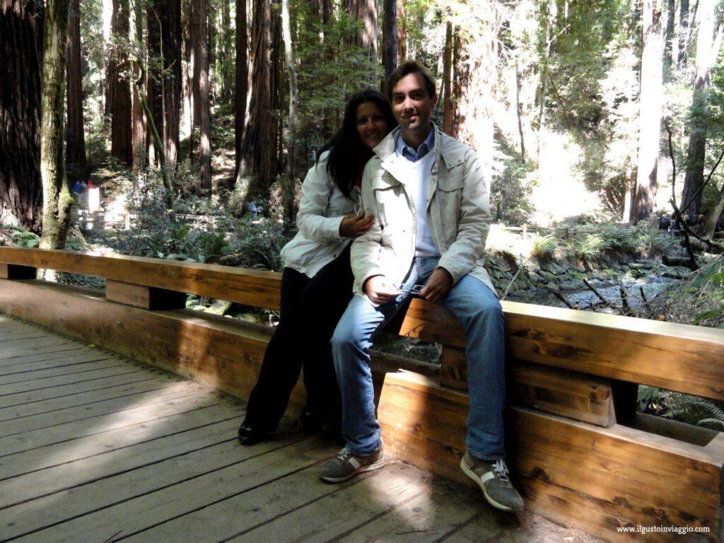 sequoie del muir woods, muir woods national monument, sequoie california