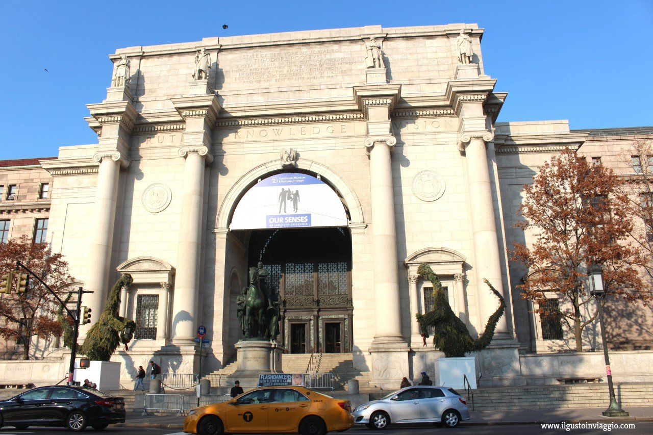 new york gratis con bambini, museo storia naturale new york