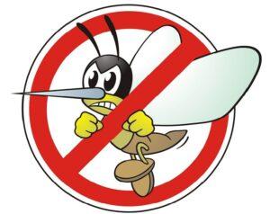 moschito, repellente zanzare, cosa mettere in valigia per un viaggio in malesia
