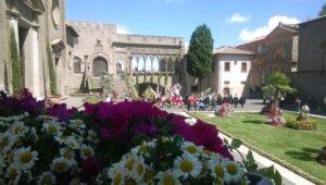 sbandieratori viterbo e san pellegrino in fiore 2018, san pellegrino in fiore, palazzo dei papi viterbo