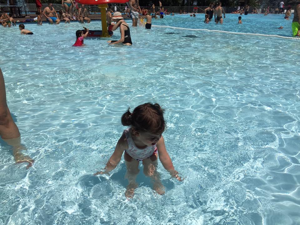 piscina zoomarine, un giorno a zoomarine