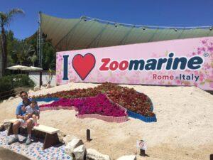 un giorno a zoomarine