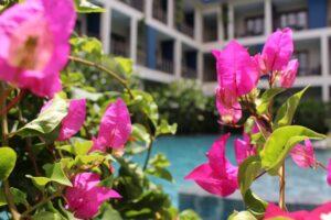 pool sakmut hotel, dove dormire a siem reap con i bambini