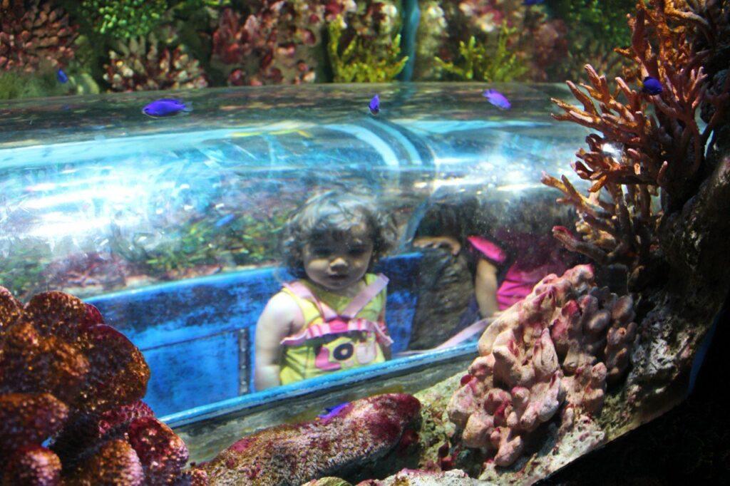 visitare l'acquario di bangkok, sealife bangkok, cosa fare a bangkok con i bambini, itinerario bangkok con i bambini