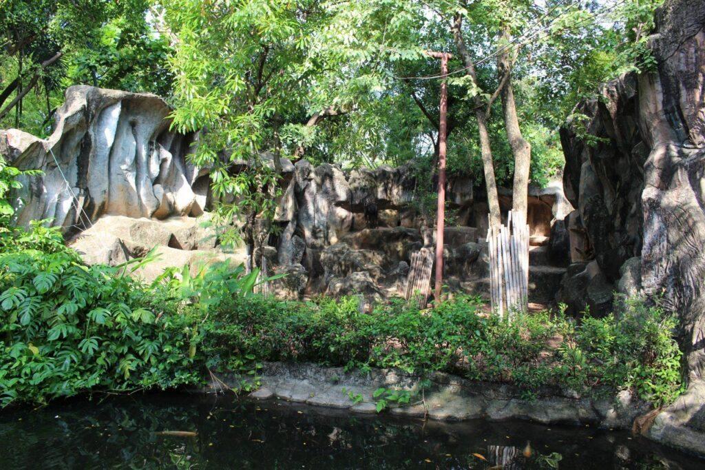 visitare lo zoo di bangkok, dusit zoo