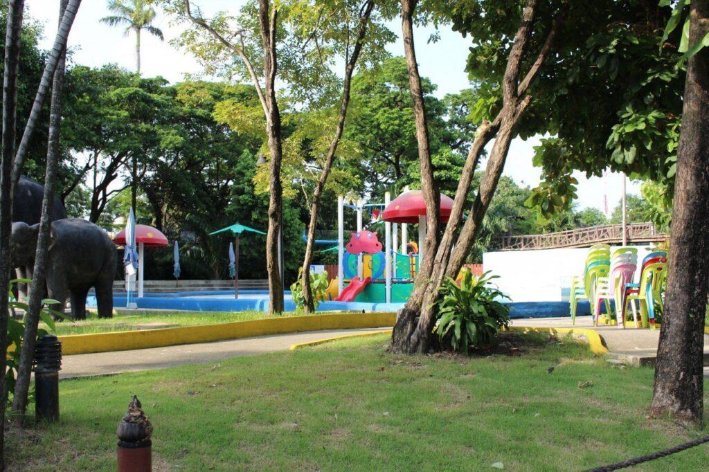 visitare lo zoo di bangkok, dusit zoo bangkok
