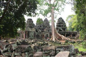 angkor wat ed il piccolo circuito, ta phrom temple