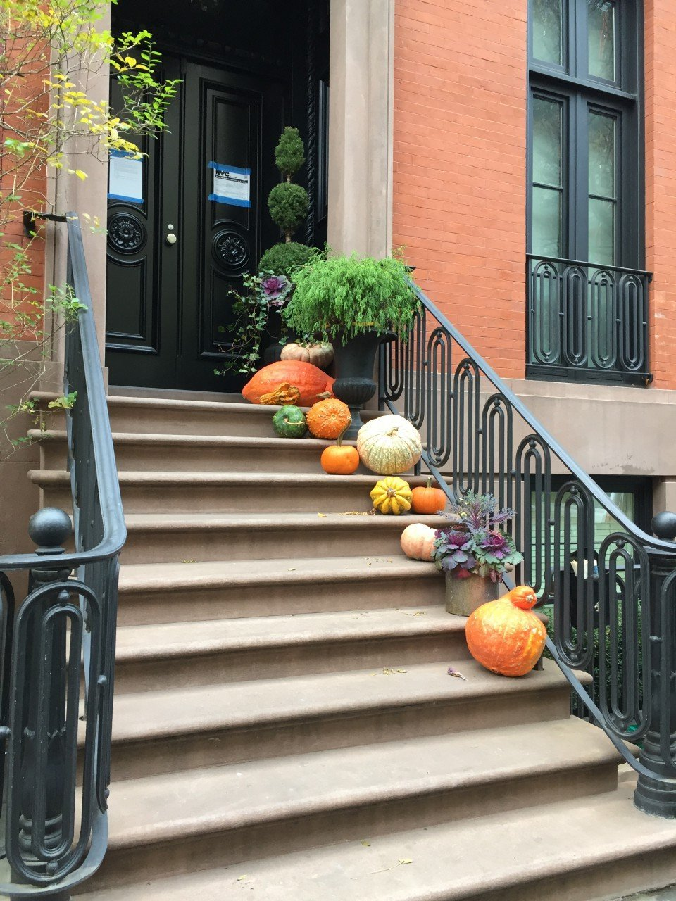 halloween a new york, pumpkin flotilla