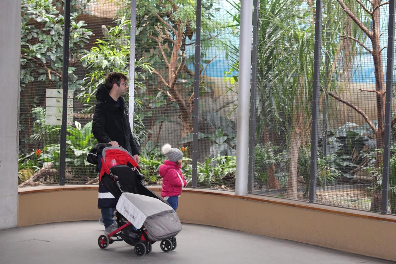 zoo berlino, valigia per berlino