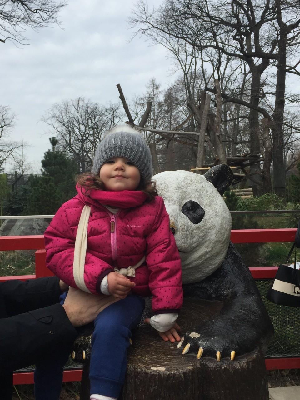 panda garden berlin, visitare lo zoo di berlino
