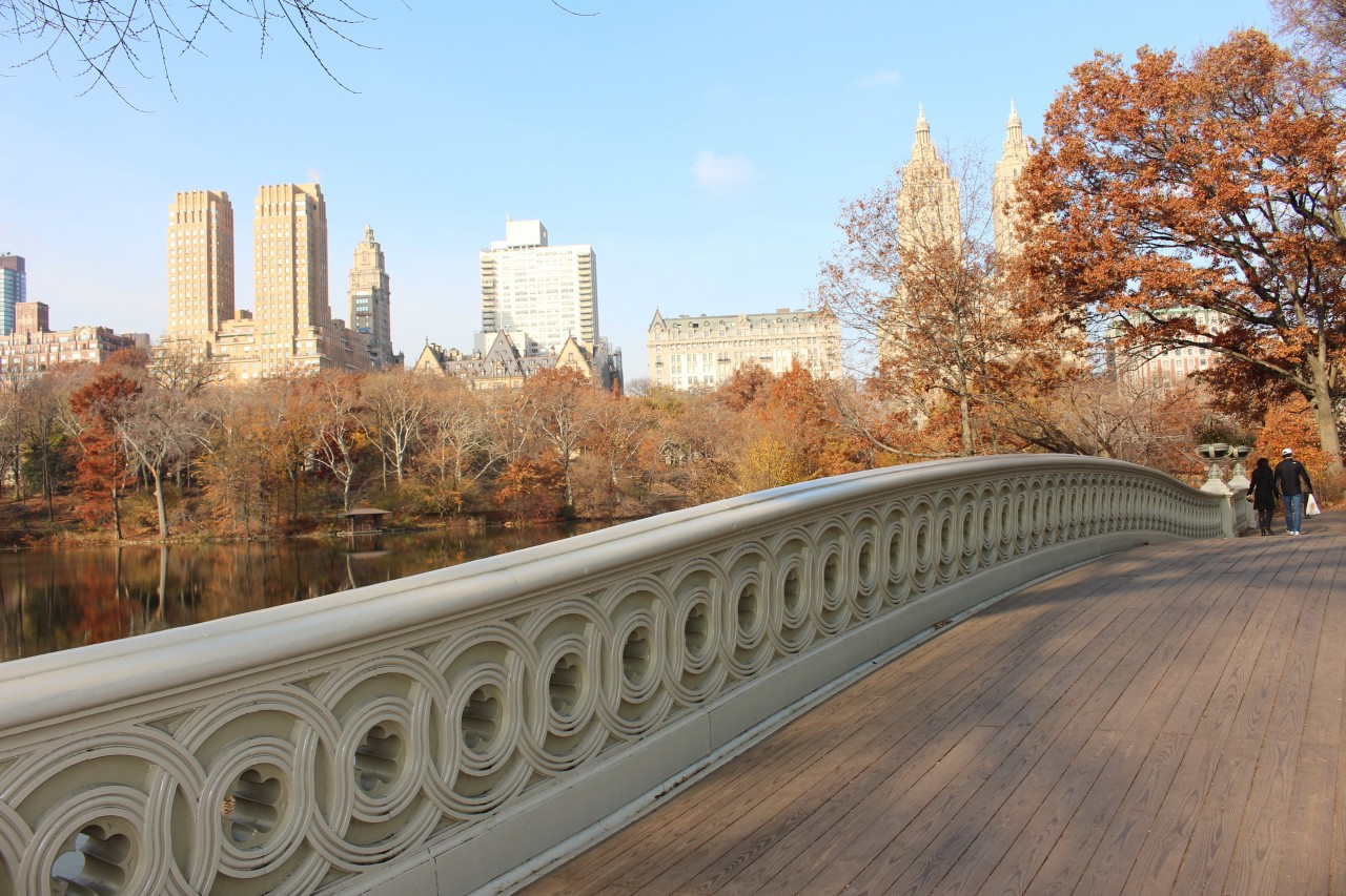 bow bridge, central park in un ora