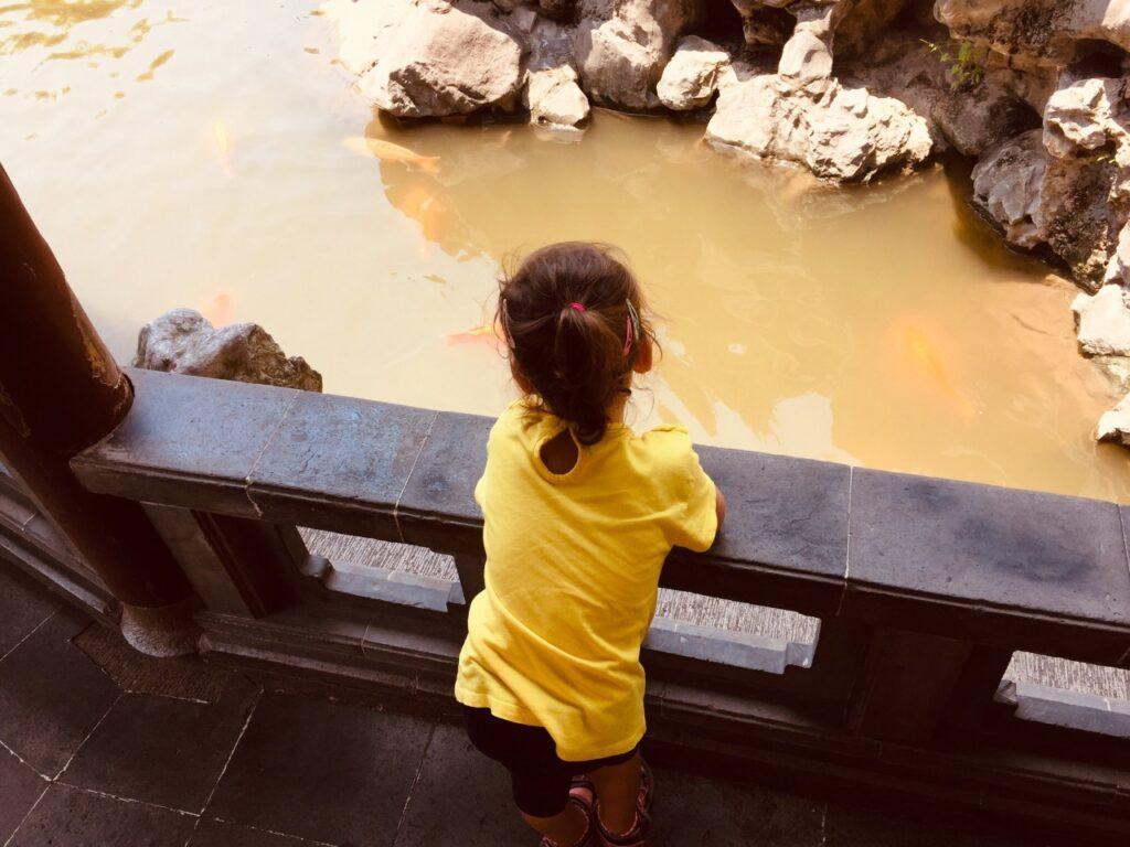 visitare_lo_yu_garden_di_shanghai_con_i_bambini